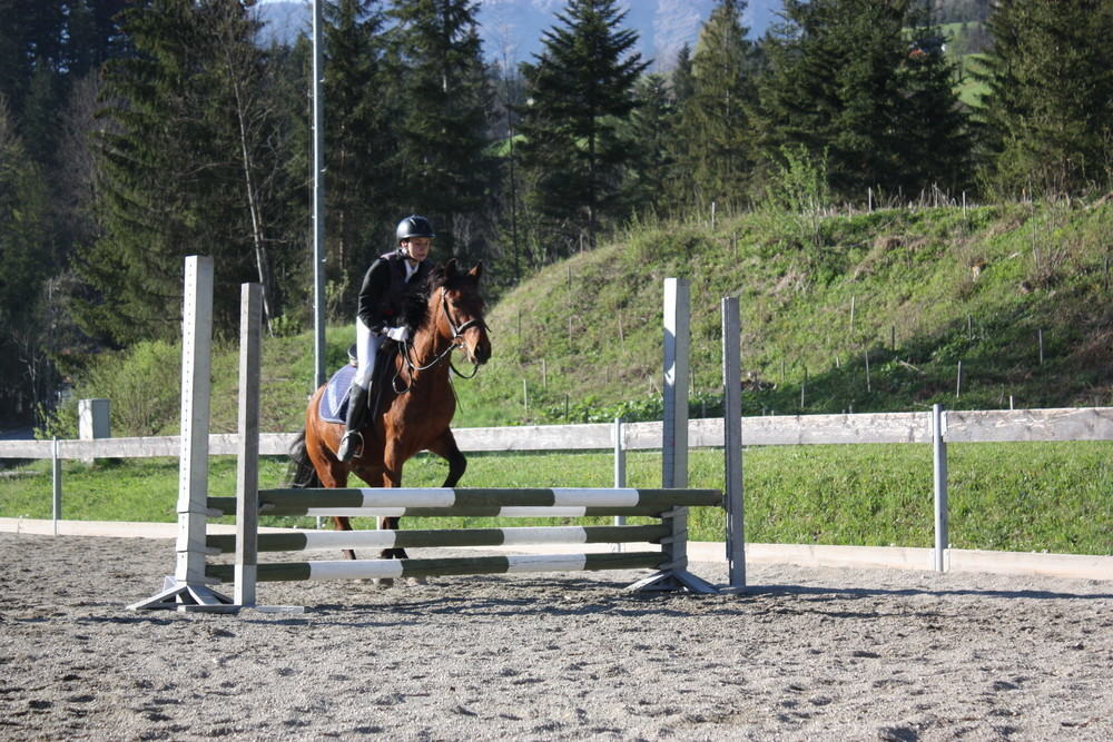 Reiten riding in Abtenau