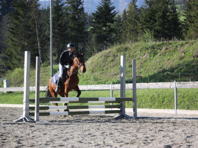 Reiten riding in Abtenau